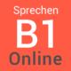 B1 Prüfung Online Sprechen
